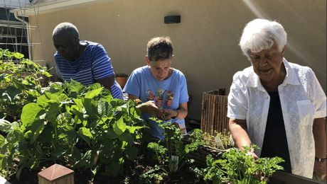 Picture of clients in our Community Sensory Garden